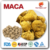 Male Enhencement Sex Products Maca Root Extract Powder Tablet