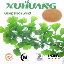 Professional Manufacturer Supply Top Quality Ginkgo Biloba Extract
