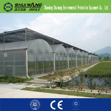 clear plastic film for greenhouse Shandong shuiwang series