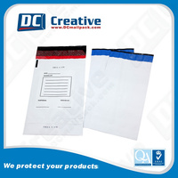 Plastic Money Bag with security seal