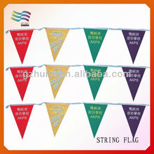 Custom Party Triangle Roadside Bunting Flags
