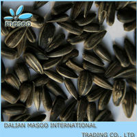Chinese wholesale oil black sunflower seeds,sunflower seeds for sale