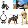 As original Go pro dog harness mount strap for animal, Go pro band dog chest for 7-41 kg dog