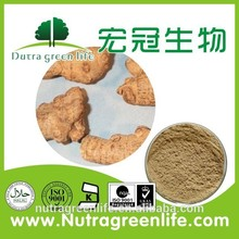 Manufacturer Supply Radix Notoginseng Extract Powder/ Natuarl Radix Notoginseng Extract For Nutrition Supplement