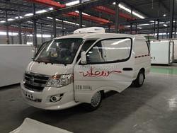 small refrigerator box truck, freezer cargo van, ice crean van