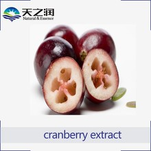 Biggest Supplier Cranberry Juice Extract U.S.A Import Vaccinium Macrocarpon Proanthocyanidins 5%-70%