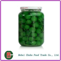 HACCP Factory Canned Fruit Green Cherry