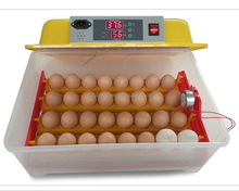 New Condition and Bird,Chicken,Duck,Emu,Goose,Ostrich,Reptile,Turkey Usage commercial incubator WQ-32 with CE certification