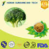 Lowest price of Broccoli extract powder HPLC 0.5%-10% Sulforaphane