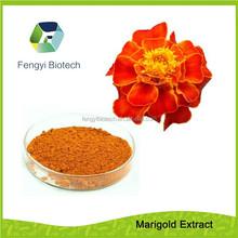 Marigold Extract Powder-lutein & zeaxanthin help to prevent heart disease