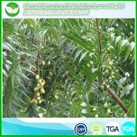neem oil gujarat/wholesale neem oil/neem oil bulk oil