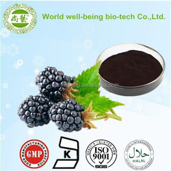 Hot selling Top Quality Pure 100% Natural Mulberry Extract