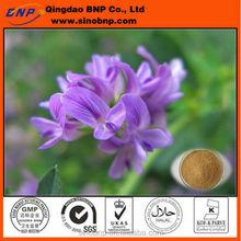 Ventas calientes 100% de la tapa Natural de alta calidad de Alfalfa extracto en polvo clorofila