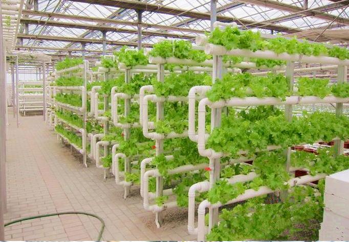 Nft Pvc Hidroponia Verticais Morango Alface Sistema De