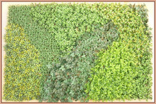 Wall grass and plants decoration for indoor and outdoor landscape