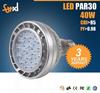SAA UL Approval IP65 Indoor/Outdoor 40W Waterproof LED PAR30 Spotlight/LED Par Lamp