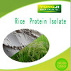 Ideal food ingredients rice protein isolate