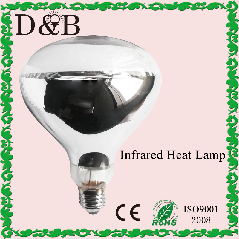 R40 R125 Incandescent Reptile Bathroom Body Use Food Warming Hard Glass Infrared Heat