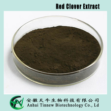 Best quality and professional of Red Clover Extract, 10:1, 20:1, 30:1, Red Clover Extract