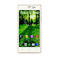 5inch dual core dual sim card HG electronics and omes low price simple mobile phone