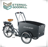 2015 hot sale three wheel electric Cargo Bike/Electric tricycle model UB9031E-6S