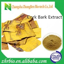 GMP Manufacturer supply High Quality Cork Bark Extract Powder 10:1
