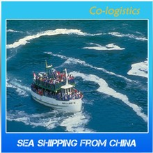 Professional sea freight agent from China to Germany--Mina