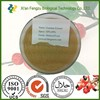 Nature guarana extract,100% pure guarana seed extract powder