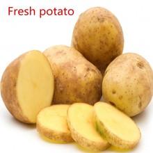 The price list of fresh potato in China