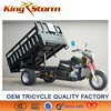 2013 New Gas Hot Seller 200CC Cargo Tricycle