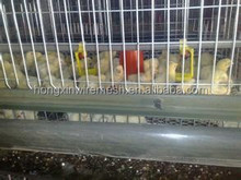 hot sale best quality chicken breeding cage real factory
