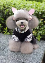 lovely pet apparel dog winter coats fine pet product dog grooming