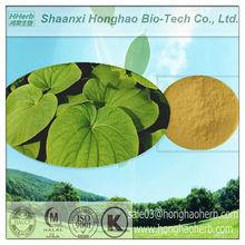 100% naturaleza kavalactonas 30% hplc extracto de kava