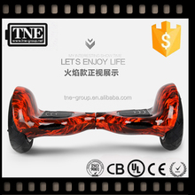 TNE 18 months Warranty OEM factory JAPAN shenzhen self balance electric unicycle mini scooter two wheels outdoor fun equipment