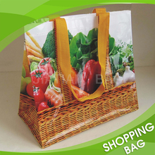 Picture Printed PP Woven Handled Grocery Shopping Bag
