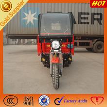 250CC Mini Gas Cars for Adults