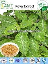 el mejor precio de la raíz de kava en polvo
