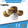 15 Degree Wire Collation Galvanized Pallet Coil Nails, coil corrugated nail