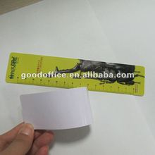 [Promotional gift]Good quality 15cm pvc plastic ruler
