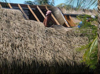 artificial synthetic palm leaves for thatch roof