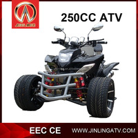 EEC Approved 250cc 3 wheeler ATV Trike For Sale