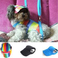 Gorras de béisbol para perros