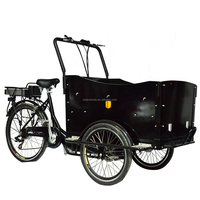 CE Danish bakfiets family 3 wheel cargo electric flatbed trike with roof for shopping