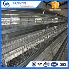 Hot sale good quality automatic layer poultry farm design