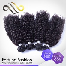 100 percent unprocessed virgin indian/brazilian kinky curly braiding human hair for hair loss treatment