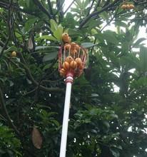 Garden tools manual fruit picker for cherry/orange