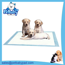 High quality pet urine mat, the cat and dog training suction clean urine pad, pet supplies
