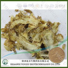 Herbal medicine extracts manufacturer supply extract of angelica dong quai