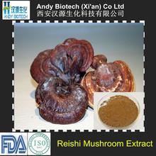 4:1 Natural Reishi Mushroom Extract