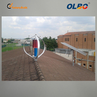 Professional Small Vertical Axis Wind Turbine Maglev Windmill with 3 Blades